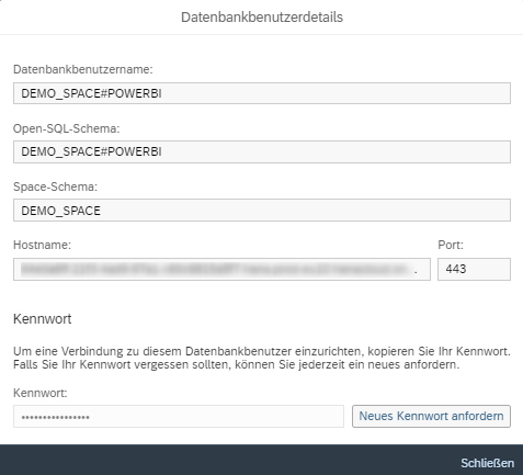 SAP DWC Datenbank-Benutzerdetails