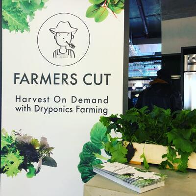 Farmers Cut IBsolution