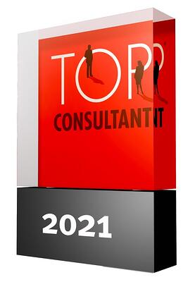 Top-Consultant-Trophaee-800x554px