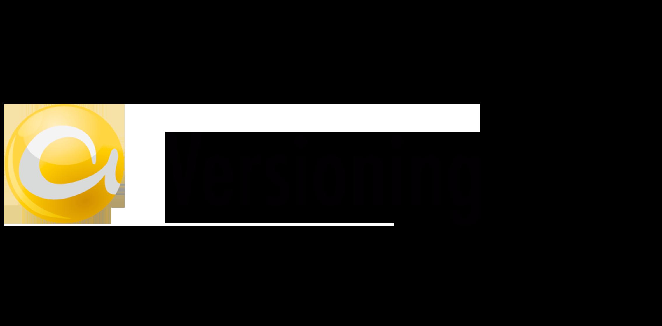 AGIMENDO.costplan_Tabber_versioning