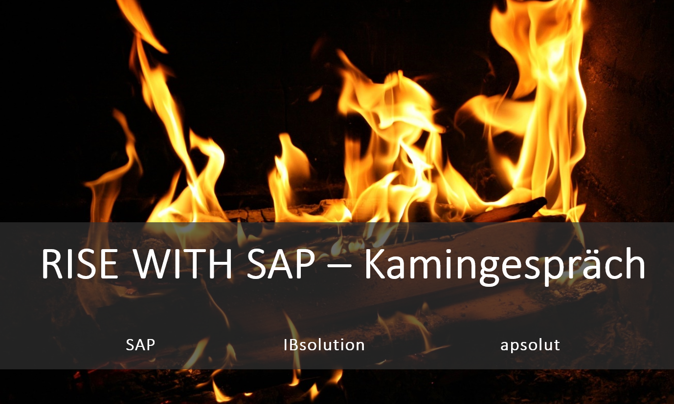 IBsolution RISE with SAP Kamingespräch