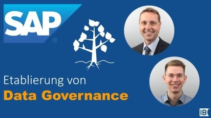 Best Practices Data Governance   IBsolution