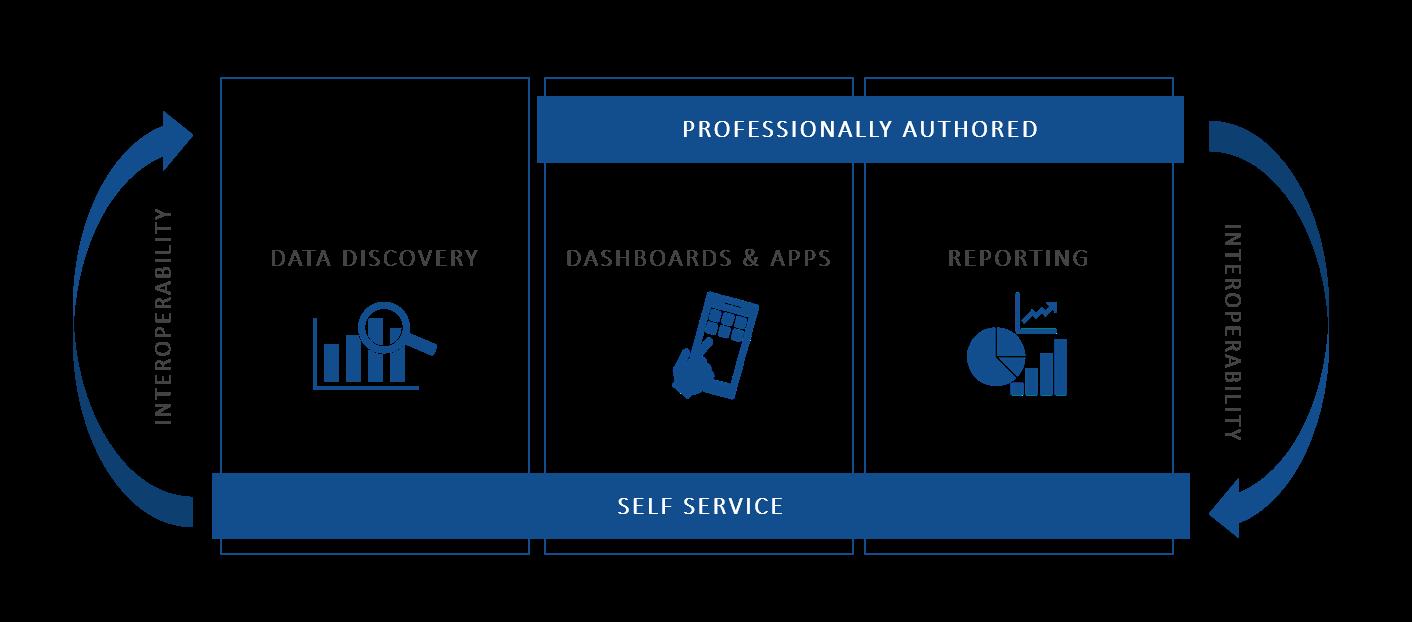 professionally-authored-self-services_sap-BI-1